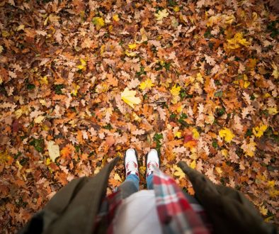 Canva - Person Standing on a Ground With Dry Leaves